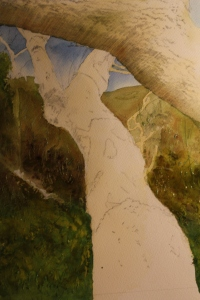 In this image of the painting I have begun to mask off the areas which i wish to keep light within the hedgerow behind the midground tree trunk. Remembering with watercolours the idea is to work from light to dark. I have also started to mask off leaves which I hope to keep covered until the very end.